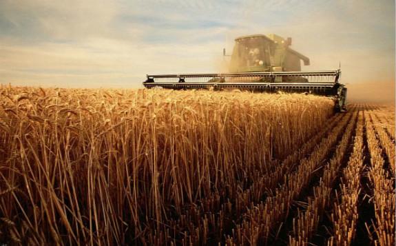 核技术:中国粮食增产的新动力