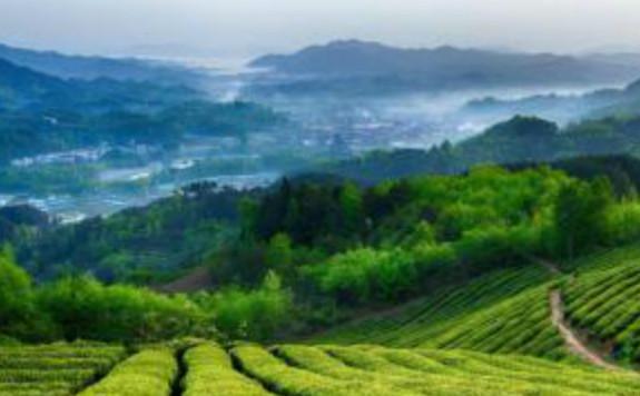 """运用电子束辐照技术助推""""美丽中国""""建设"""