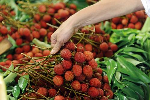 辐照技术在荔枝杀菌保鲜中的应用
