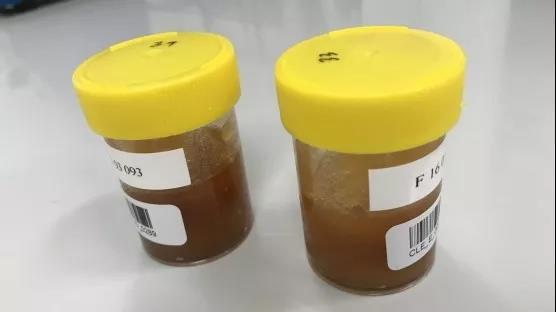IAEA启动利用核技术帮助各国打击食品造假的研究项目