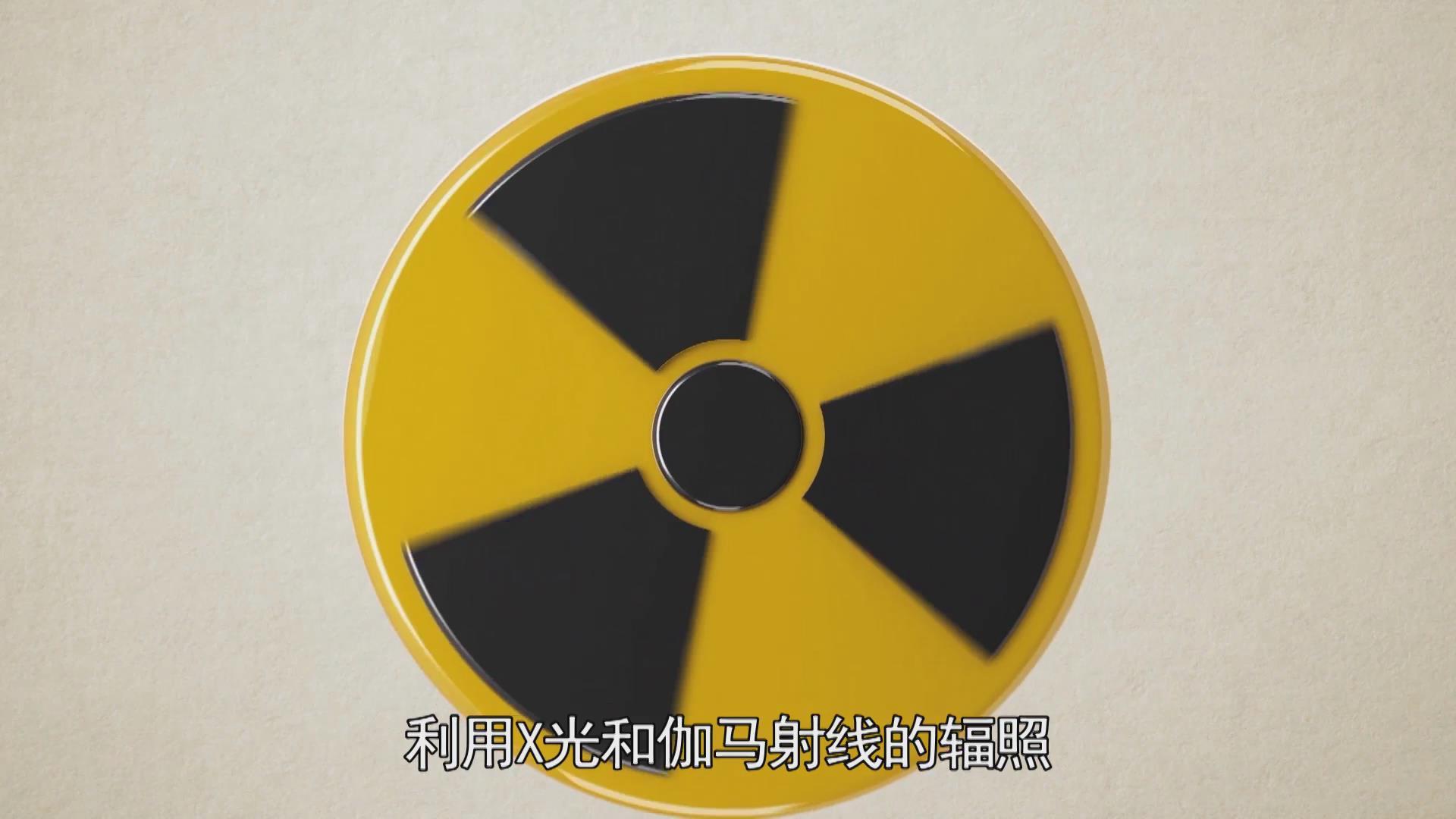 利用核科学进行食品辐照
