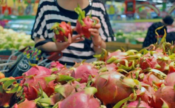 辐照后的越南火龙果扩大海外市场 供应印度、澳大利亚等新出口市场