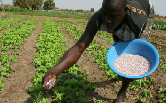 肥料和原子平衡作用可以提高生产力和保护环境