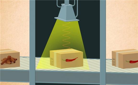 泉州市运用辐照保鲜技术 助力农产品销售