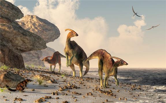借助稳定同位素 探究古代恐龙的生活