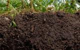 镇江土壤专项监测特色实验室项目获省批建