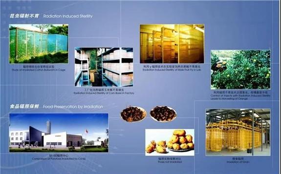 核技术和同位素技术在中国农业领域的应用