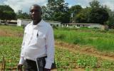 国际原子能机构利用核技术帮助赞比亚农民提高产量和收入