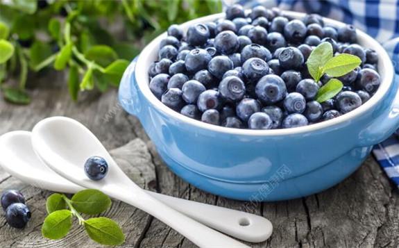 电子束辐照对蓝莓的长效冷藏保鲜效果的研究