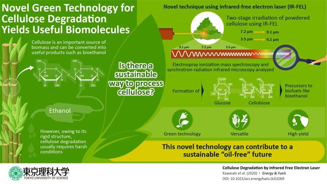 激光辐照可轻松降解用于生产生物燃料的纤维素