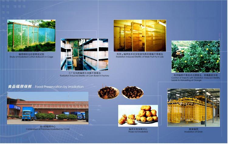 关于食品辐照技术的应用领域