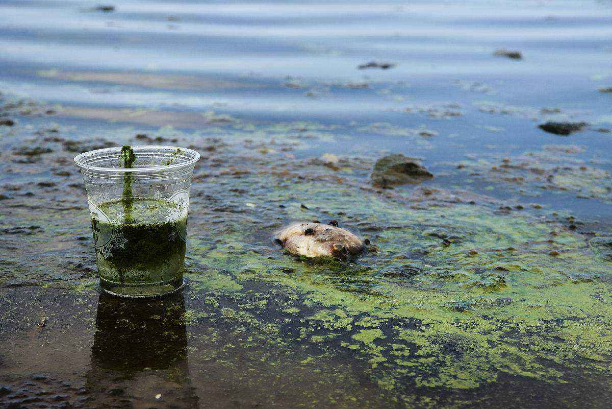 同位素技术与常规技术结合区分地下水污染物来源