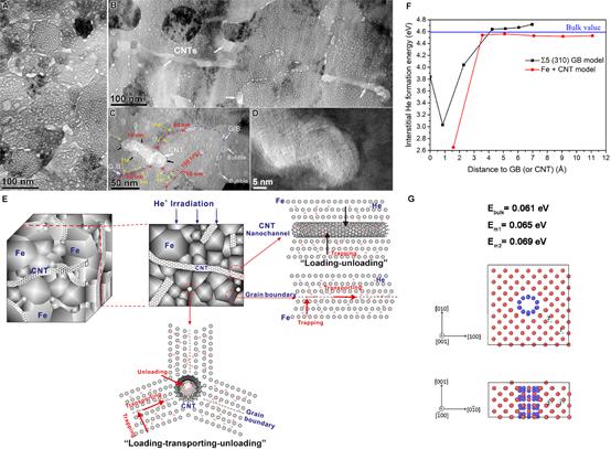 利用晶界和C纳米管联合作用提高核材料性能