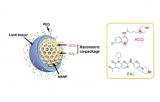 纳米药物在胰腺癌免疫治疗领域取得重要进展