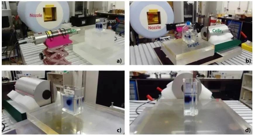 粒子治疗中基于瞬发伽马谱学的人体元素浓度测量