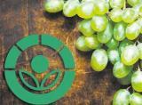 食品辐照的基本常识:食品辐照工艺、辐射源与食品辐照装置等