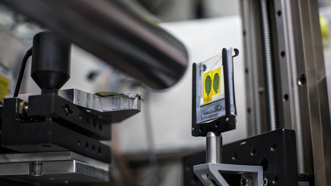 美国国家科学基金会(NSF)出资3260万美元支持CHESS开发新的X射线束线