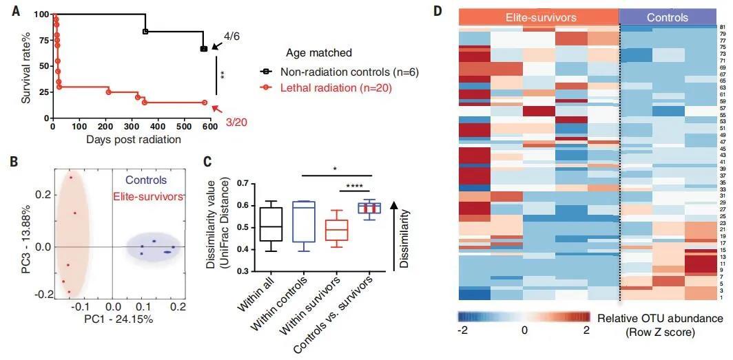 美国研究组发现可防辐射的肠道微生物和代谢物
