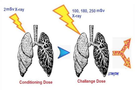 低剂量辐射能否提高COVID-19的存活率?