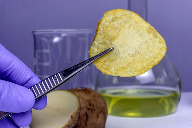使用放射性同位素标记法了解食品加工过程中的化学反应