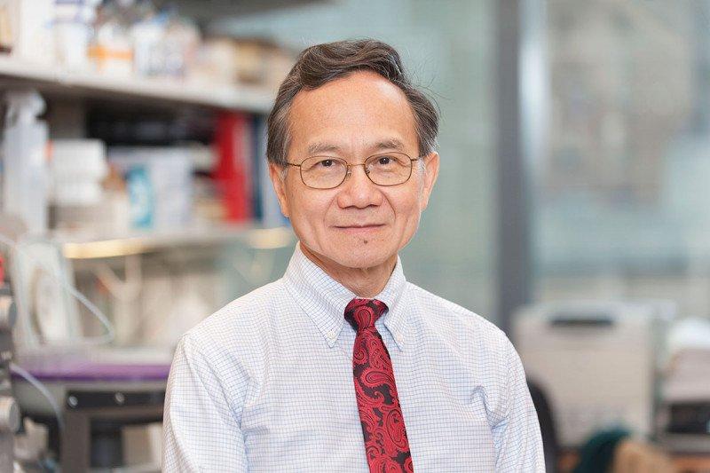 MSK研究人员设计了一种对癌细胞更具破坏性的新放射疗法