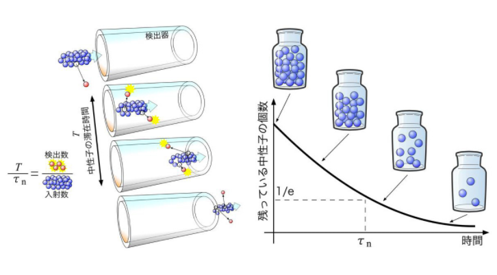 中子寿命问题:中子崩溃时 其中一部分会变成暗物质吗?