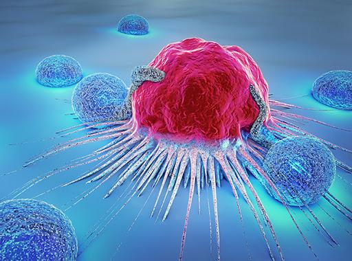 确定了儿童癌症神经母细胞瘤的新药物靶标