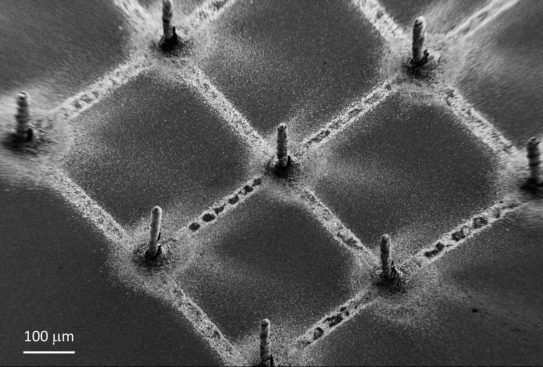 在石墨烯上进行3D打印钙钛矿制造下一代X射线探测器