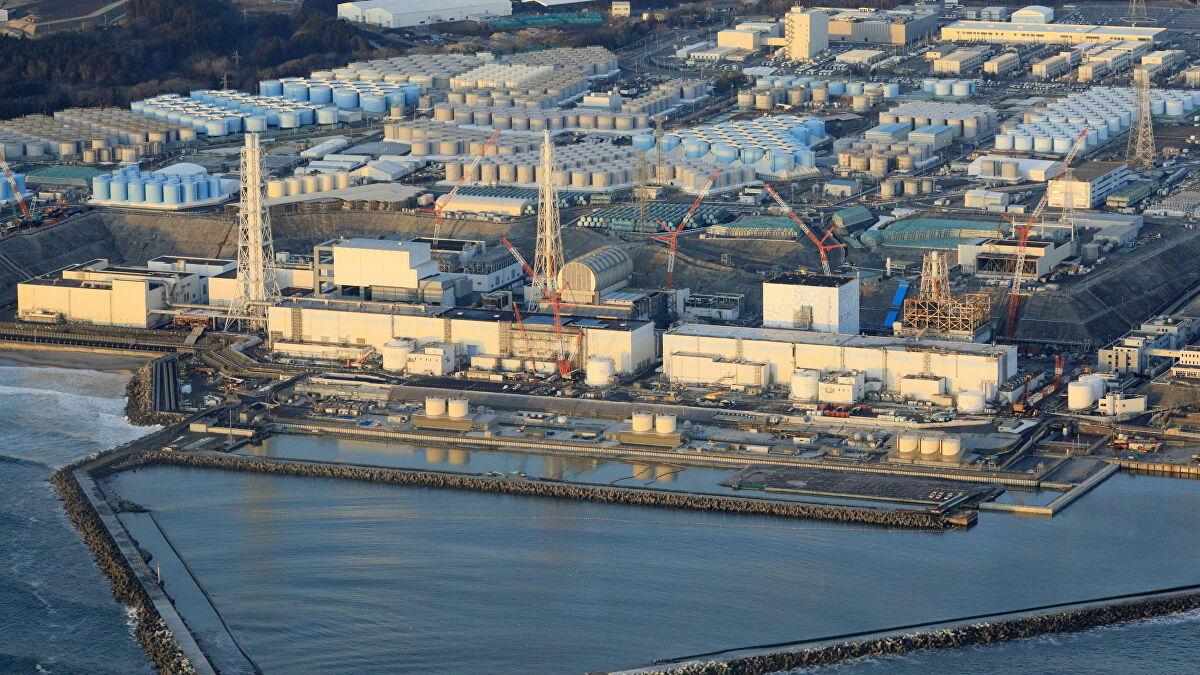 日本福岛县捕获受辐射污染的鱼 放射性铯含量超5倍