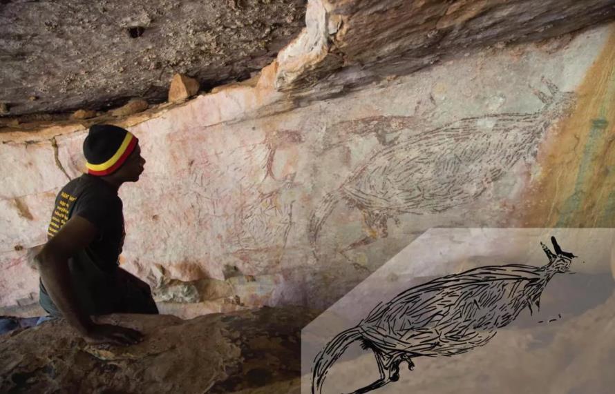 """澳大利亚放射性碳同位素鉴定17300年前的""""袋鼠岩画"""""""