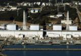 日本研究发现核试验产生的放射性铯在森林长期残留