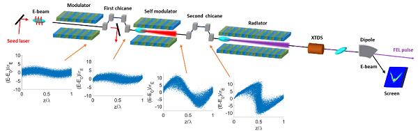 利用上海软X射线自由电子激光装置 科学家提出相干能量调制的自放大机制