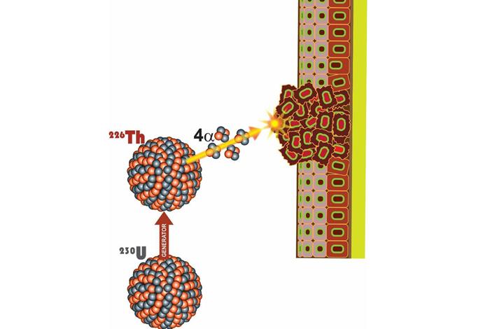 Los Alamos新型发生器系统直接向癌细胞提供大剂量辐射