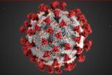 研究发现:紫外线辐射可在实验室杀死导致COVID-19的病毒