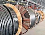 哈缆集团成功研发辐照交联环保清洁型电缆