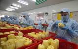 """越南""""2021-2030年蔬果加工业发展提案""""支持投资食品辐照中心建设"""