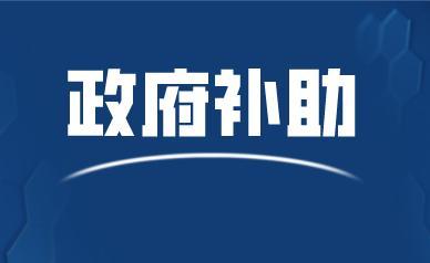 中广核核技术发展股份有限公司关于全资子公司收到政府补助的公告