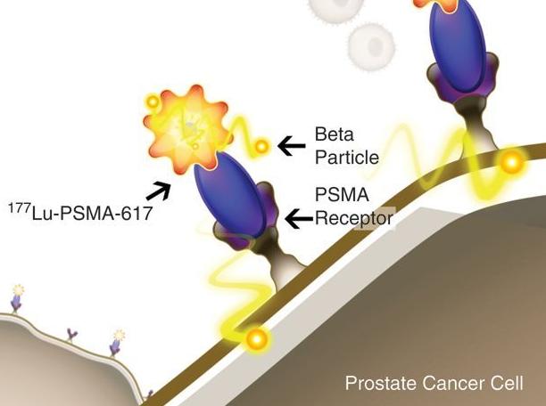 诺华扩大靶向放射配体疗法管线:获得成纤维细胞活化蛋白(FAP)靶向剂库!