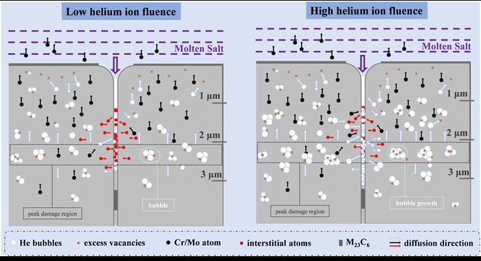 高温镍基合金辐照熔盐腐蚀协同损伤机制研究取得进展