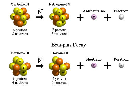 为什么有些元素具有放射性?原子核如何进行放射性衰变?