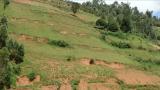 利用核技术评估和测量乌干达土壤侵蚀的深度