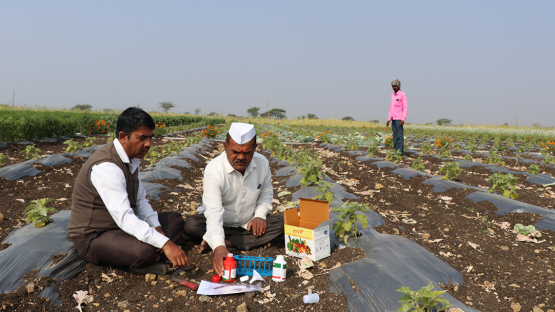印度农民使用新的土壤有机碳检测试剂盒确定土壤成分
