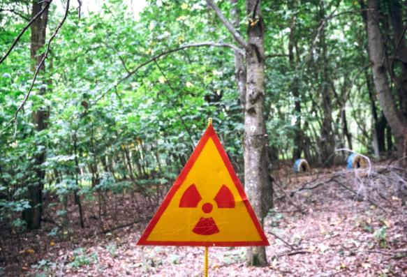 两项具有里程碑意义的研究检查了切尔诺贝利辐射对人体的影响