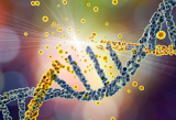 切尔诺贝利核灾35年后 重估核辐射对基因影响