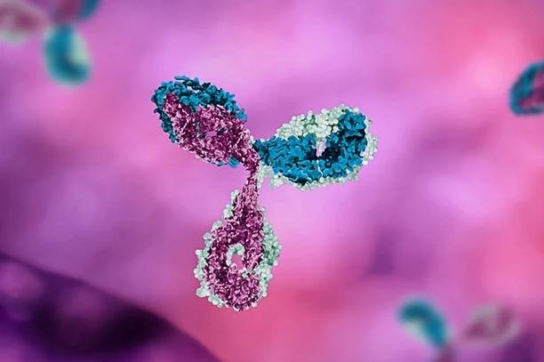 科学家利用粒子加速器发现蛋白质的基本调控机制